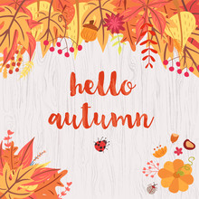 Hello Autumn Design.