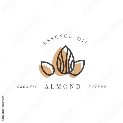 Fototapeta Vector set of packaging design templates and emblems in linear style - beauty and cosmetics oils - almond obraz