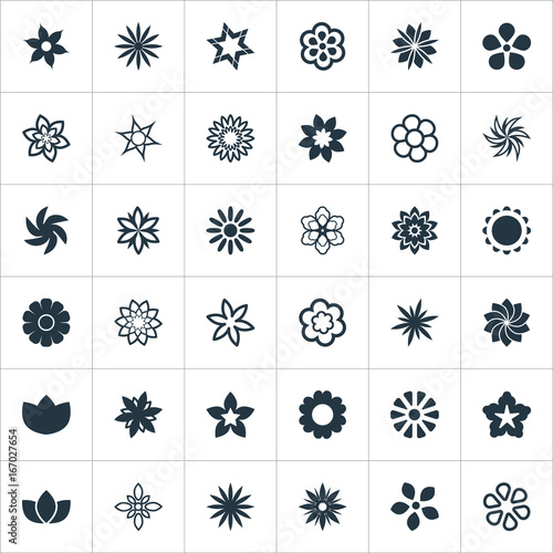 Vector Illustration Set Of Simple Flower Icons Elements