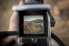 Close-up Of Landscape On Camera Screen