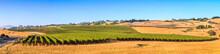 Sonoma County California Wine ...