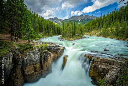 Aluminium Prints Forest river Sunwapta Falls in Jasper National Park, Canada