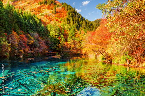 Poster Miel The Five Flower Lake (Multicolored Lake) among autumn forest