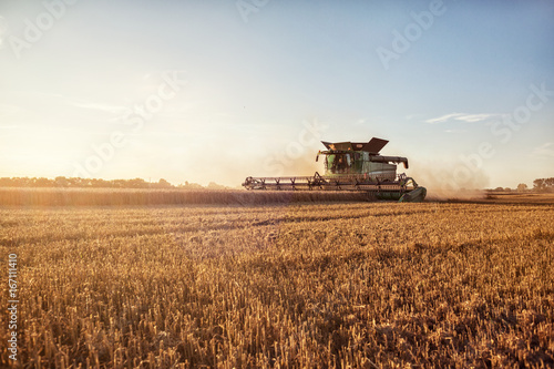 Valokuva Mähdrescher bei der Weizenernte