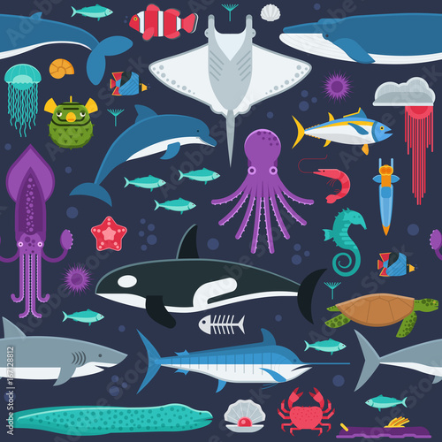 Sea life pattern with different marine animals Canvas Print