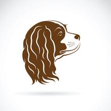 Vector Of Cavalier King Charles Spaniel Dog On White Background. Pet Animal. Dog Head.