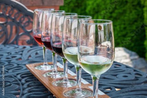 Fotografie, Obraz  Wine tasting from sample glasses on a summer day