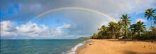 Panoramic Rainbow Tropical Par...