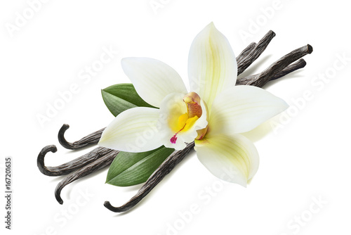 Fotomural  Many vanilla sticks, flower and leaves isolated