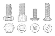 Metal Bolts And Screws. Hand D...