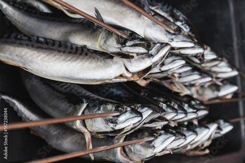 Whole mackerels on long skewers ready to be smoked