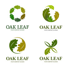 Oak Leaf Vector Logo Set. Logo...
