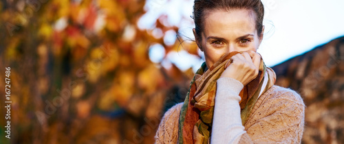 Fotografie, Obraz  Young woman hiding in scarf in autumn evening