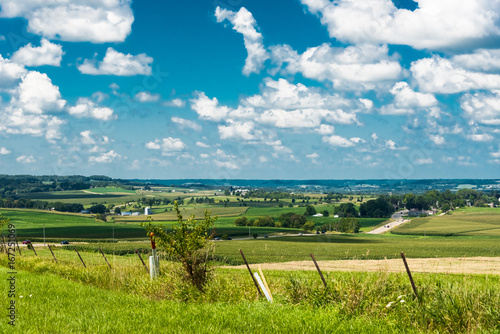 Fotografia, Obraz View of a field in Illinois country side