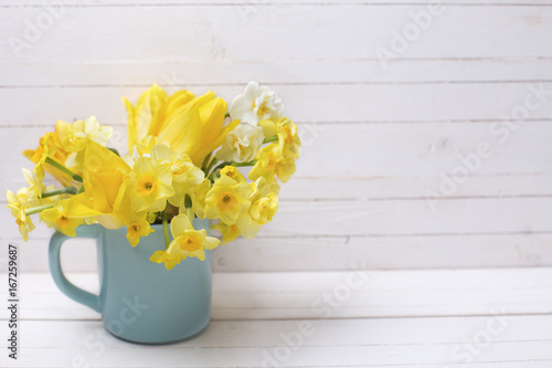 Bright yellow spring daffodils flowers in cup