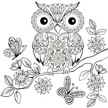 Decorative Owl On A Flowering ...