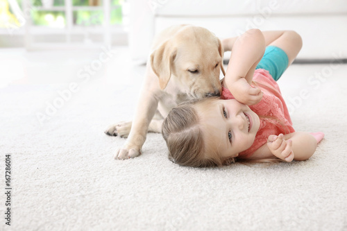 Cute child with Labrador Retriever at home Tapéta, Fotótapéta