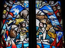 Stained Glass In Tubingen - Cr...