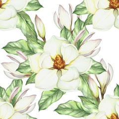 FototapetaSeamless pattern with magnolia. Hand draw watercolor illustration.