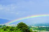 Fototapeta Tęcza - 街に架かる虹