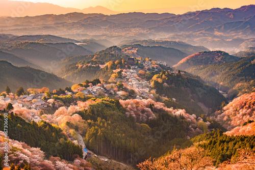 Keuken foto achterwand Kersenbloesem Yoshinoyama, Japan in Spring