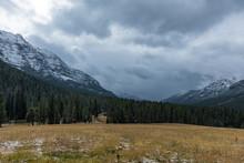 Snowy Winter In Yellowstone Na...