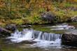 Wildbach in der herbstlichen Taiga, Flatruet, Schweden