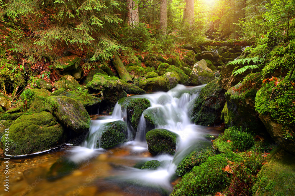 Fototapety, obrazy: Waterfall on mountain stream in the National park Sumava-Czech Republic