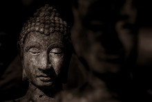 Head Of Buddha Statue In The D...
