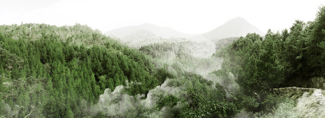 Fototapeta Do jadalni Misty mountain forest landscape covered by fog in Indonesia