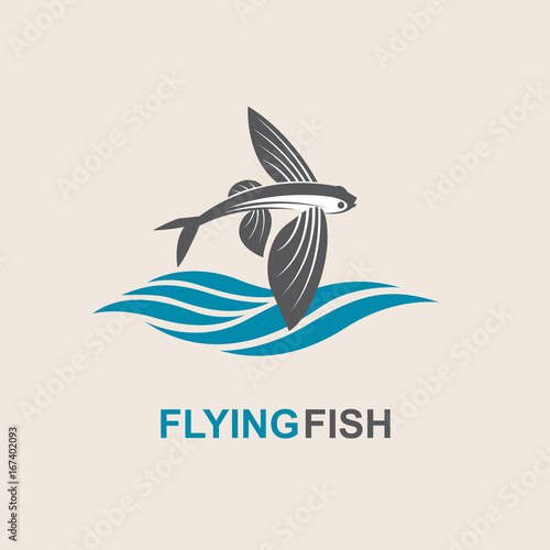 Photo icon of flying fish with waves