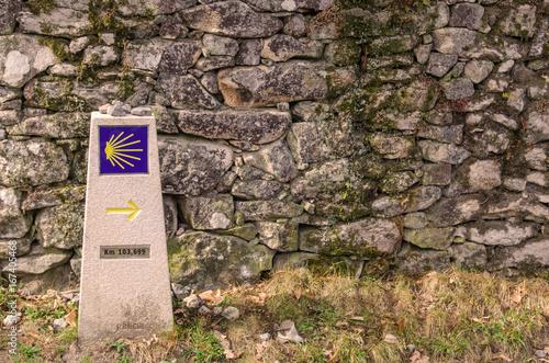 Fotografie, Obraz  Camino de santiago waymark to Santiago de Compostela
