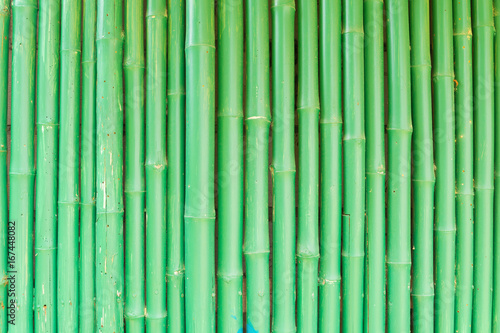 Abstract Background of Green Chinese Bamboo #167448082