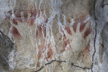 "Ancient Rock Art Paintings, From Cave That Caved In And Exposed Them To The Light Of Day, Raja Ampat, Western Papua, Indonesian Controlled New Guinea, On The Science Et Images ""Expedition Papua, In The Footsteps Of Wallace"", By Iris Foundation"