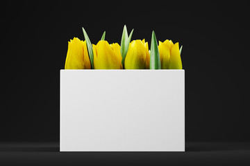 Yellow tulips in a white bag