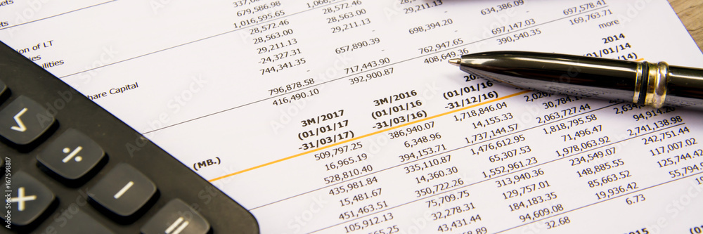 Fototapety, obrazy: financial budget statement read and check the number for analysis invest stock