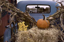 Old Pick-Up Truck Decorated For Autumn