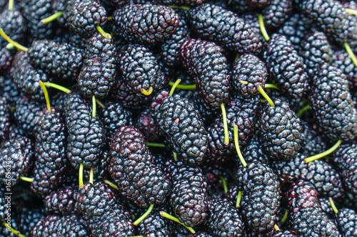 Fresh Mulberries This Stock Photo