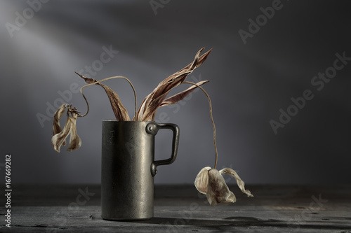 Fototapeta Still Life with withered Flowers obraz
