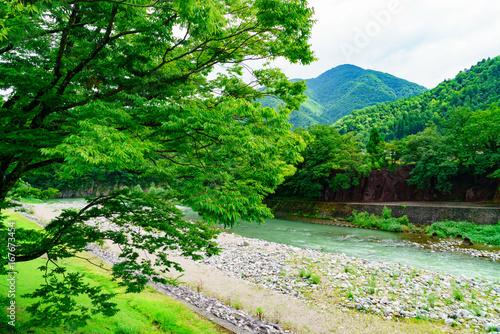 Spoed Foto op Canvas Groene 風景物語