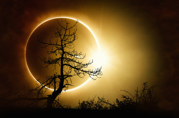 Total solar eclipse in dark...