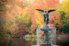 Bethesda Fountain In Fall Foli...