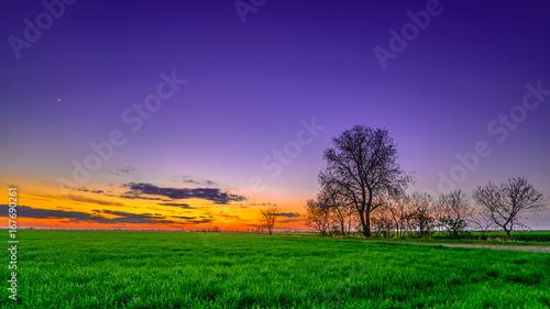 Spoed Foto op Canvas Snoeien Sunset