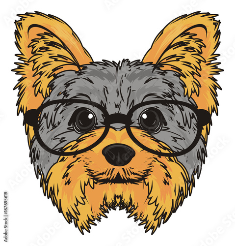 Photo sur Toile Croquis dessinés à la main des animaux Yorkshire terrier, york, yorkshire, terrier, dog, puppy, cartoon, pet, breed, england, glasses, muzzle