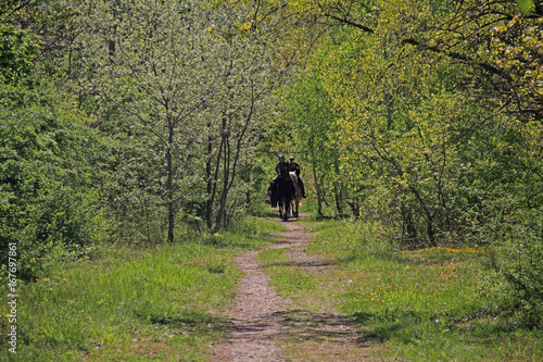 Acrylic Prints Horseback riding Ausritt