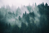 Fototapeta Forest - Misty landscape with fir forest in hipster vintage retro style