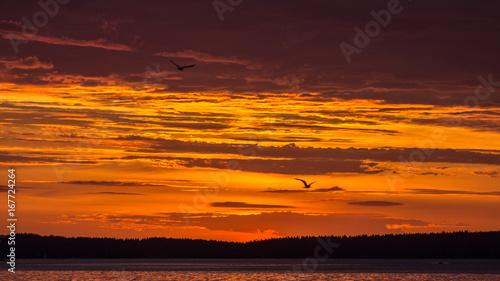 Papiers peints Orange eclat Sunset on the Lake Onega. Petrozavodsk. Karelia