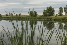 Mound Lake / A Small Lake Surr...