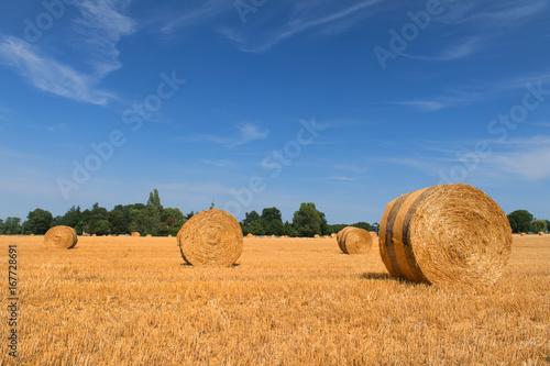 Foto op Aluminium Blauw Landscape in French Haute Vienne