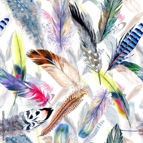 Poster Geometrische dieren Watercolor bird feather pattern from wing. Aquarelle feather for background, texture, wrapper pattern, frame or border.